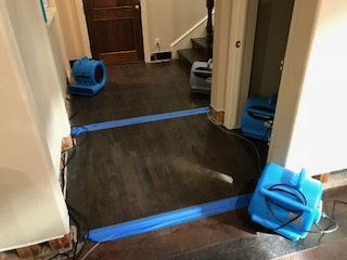 Dallas, TX - Beginning mitigation at a water damage caused by sewage backup at a household in Dallas Texas