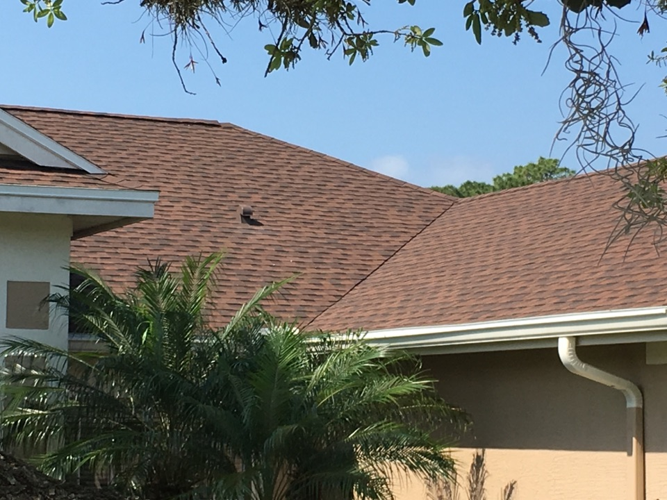 Tampa, FL - Arry's Roofing just installed this GAF shingle roof in Tampa.