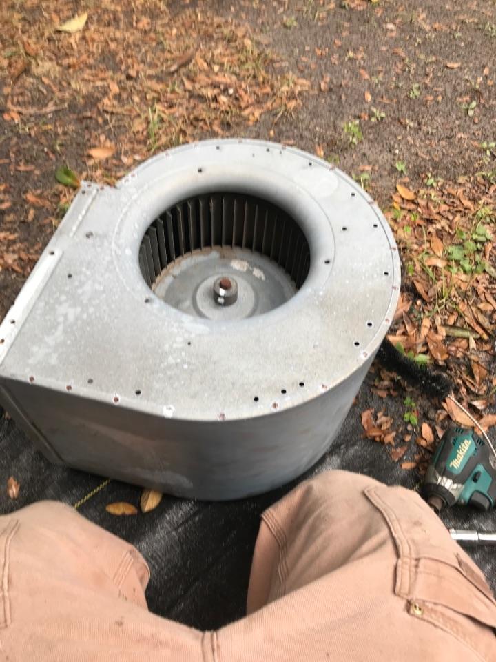 Newberry, FL - Blower wheel cleaning!