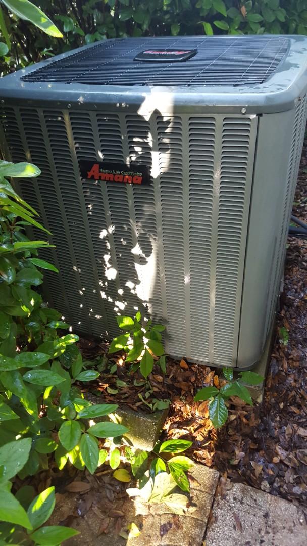 Newberry, FL - Did maintenance on nine-year-old Amanda system