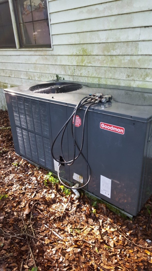 High Springs, FL - Did maintenance on 7 year old Goodman package unit