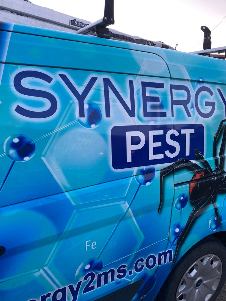 Starkville, MS - Monthly Pest Control Starkville MS: Synergy² Pest Control and Extermination Jackson MS