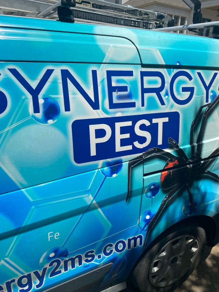 Madison, MS - Quarterly Pest Control Madison MS: Synergy² Pest Control and Extermination Jackson MS