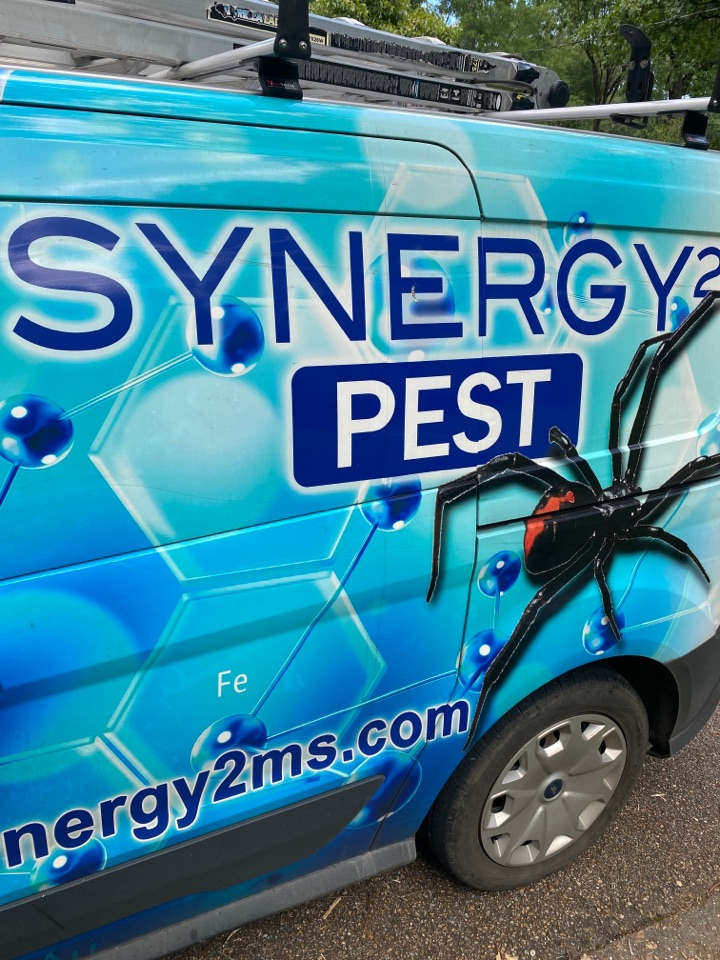 Jackson, MS - Monthly mosquito service Jackson MS: Synergy² Pest Control and Extermination Jackson MS