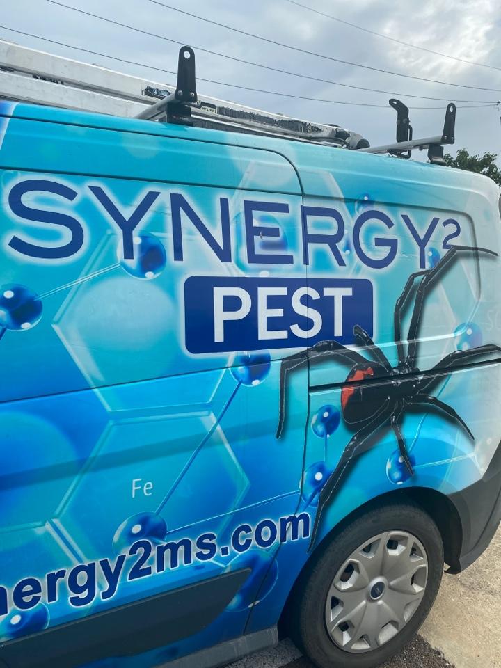 Flowood, MS - Weekly Pest Control