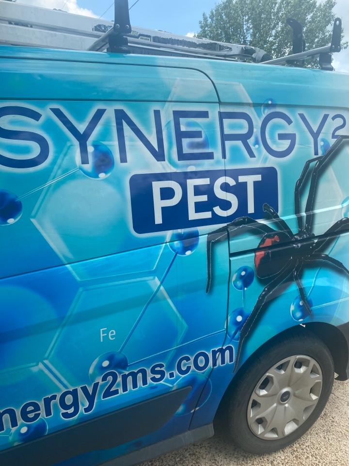 Brandon, MS - Quarterly Pest Control Brandon MS: Synergy² Pest Control and Extermination Jackson MS