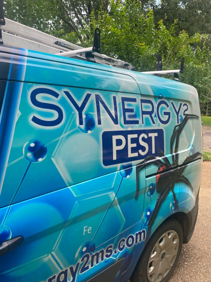 Ridgeland, MS - Quarterly Exterior Service Ridgeland MS: Synergy² Pest Control and Extermination Jackson MS