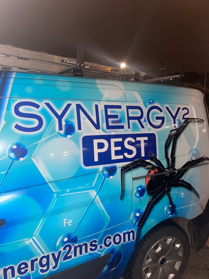 Jackson, MS - Monthly Pest Control Jackson MS: Synergy² Pest Control and Extermination Jackson MS