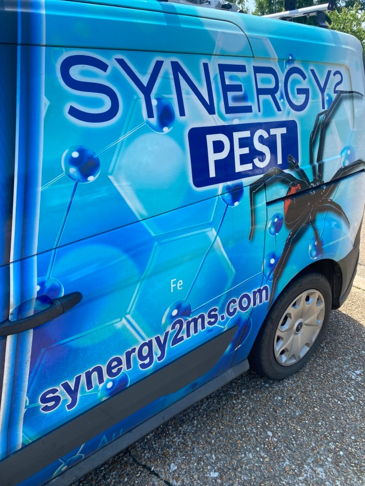 Pearl, MS - Weekly Pest Control Pearl MS: Synergy² Pest Control and Extermination Jackson MS