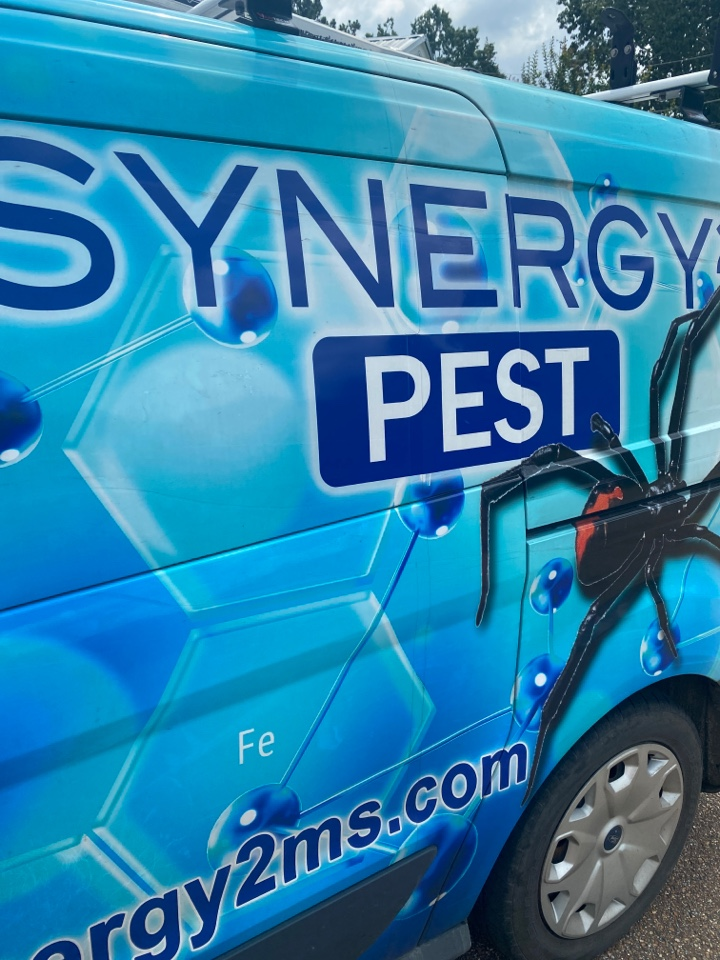 Jackson, MS - Monthly bait station service Jackson MS: Synergy² Pest Control and Extermination Jackson MS