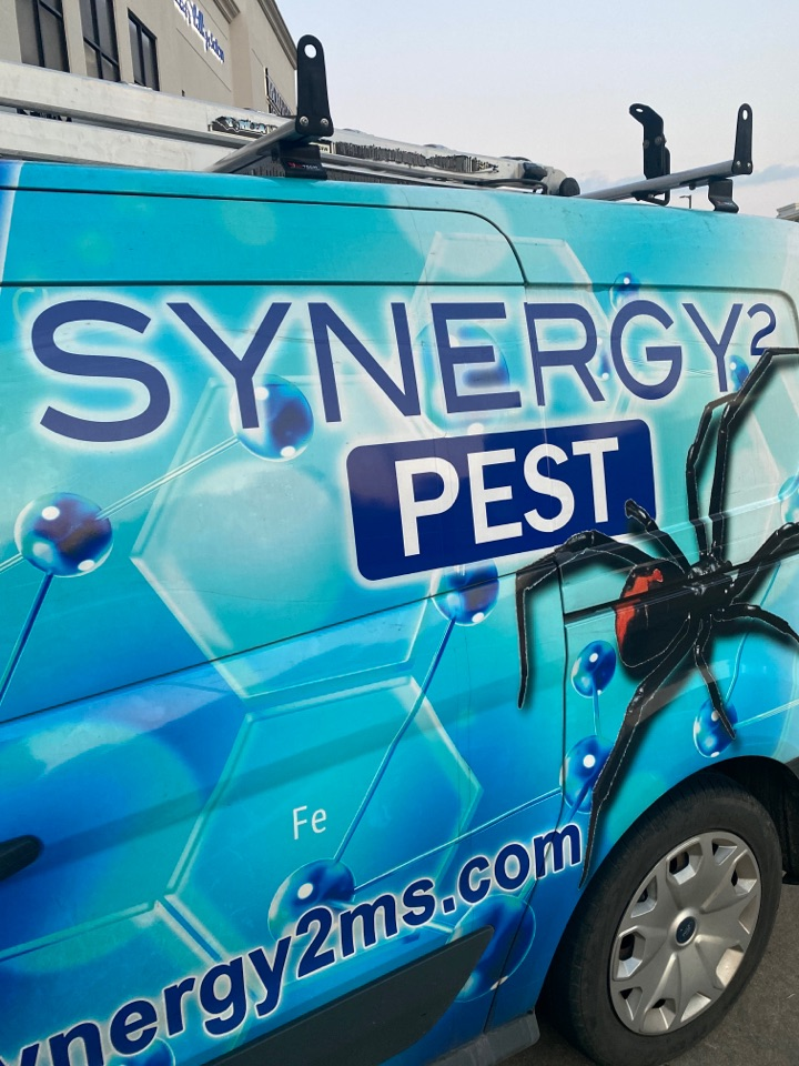 Flowood, MS - Monthly Pest Control Flowood MS: Synergy² Pest Control and Extermination Jackson MS