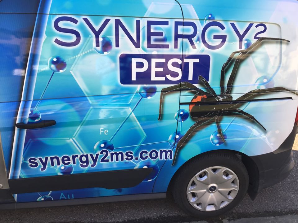 Flora, MS - Residential Monthly Exterior Pest Treatment & Monthly Mosquito Treatment Flora MS: Synergy² Pest Control and Extermination Jackson MS