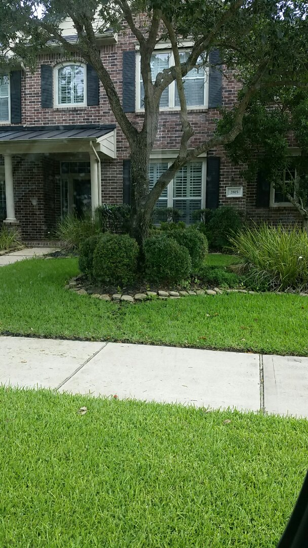 Replace broken hunter spray head next to driveway.