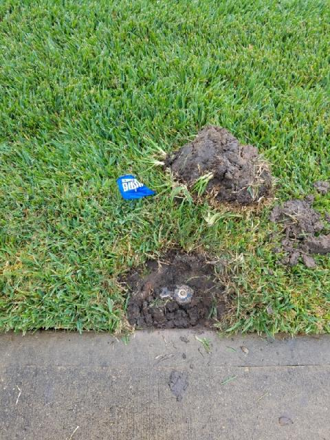 Houston, TX - Replaced Broken Heads and repaired leak. Rainbird system
