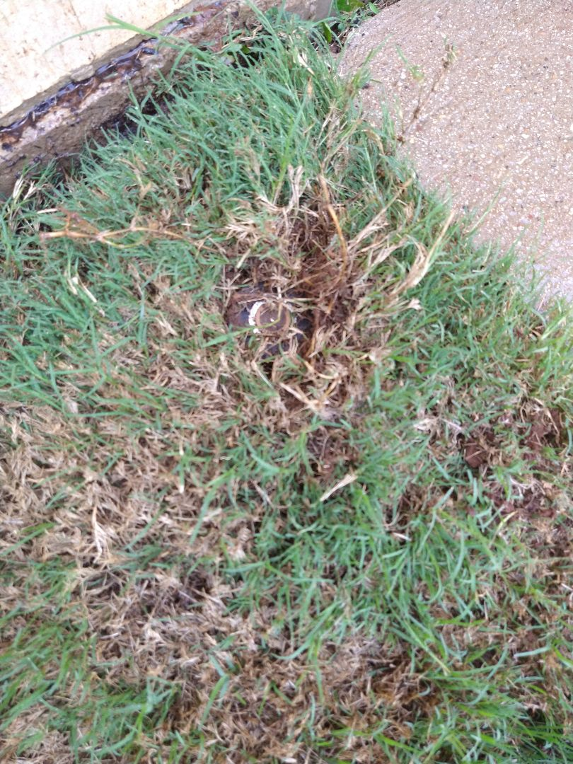 Corinth, TX - Moving sprinkler heads