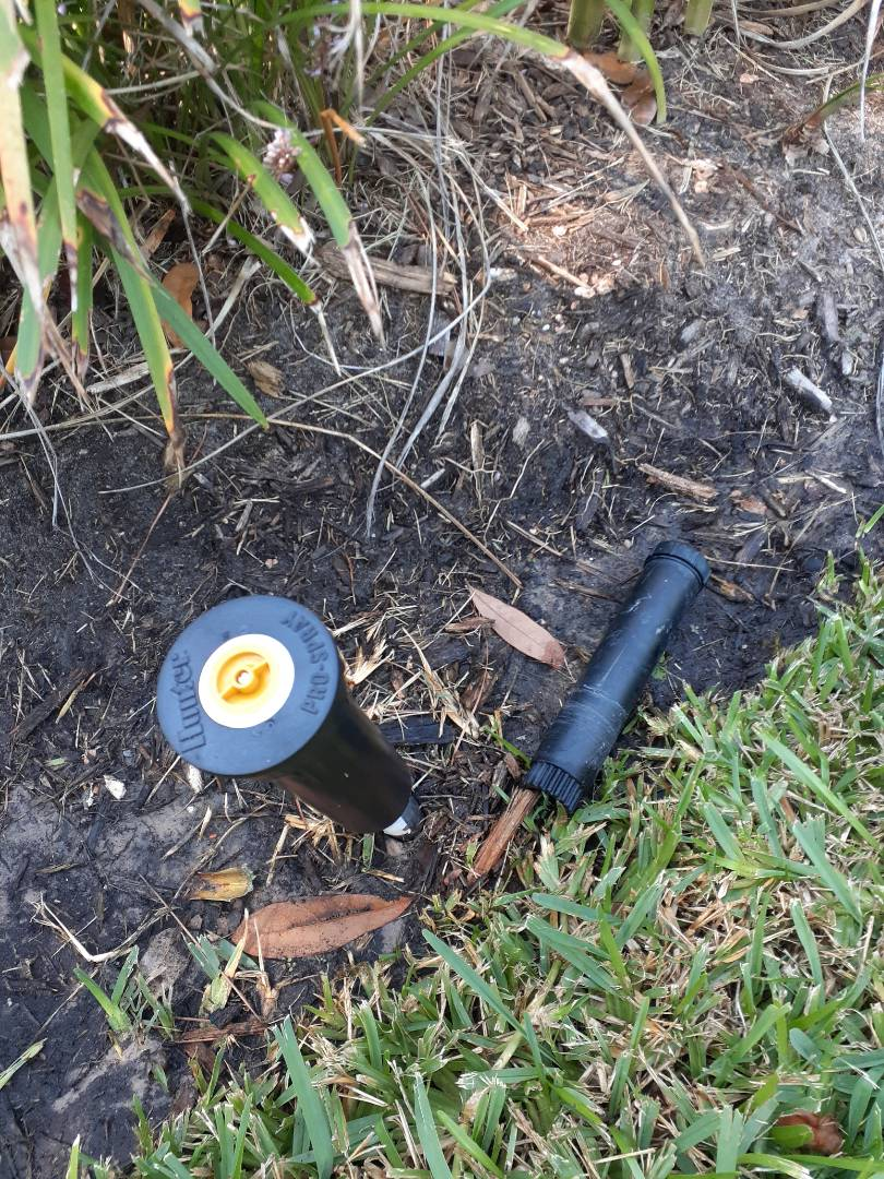 Cypress, TX - Replacing sprinkler heads