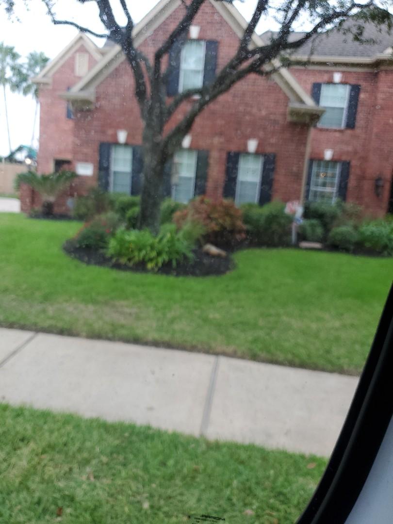 Pearland, TX - Moved sprinkler head.