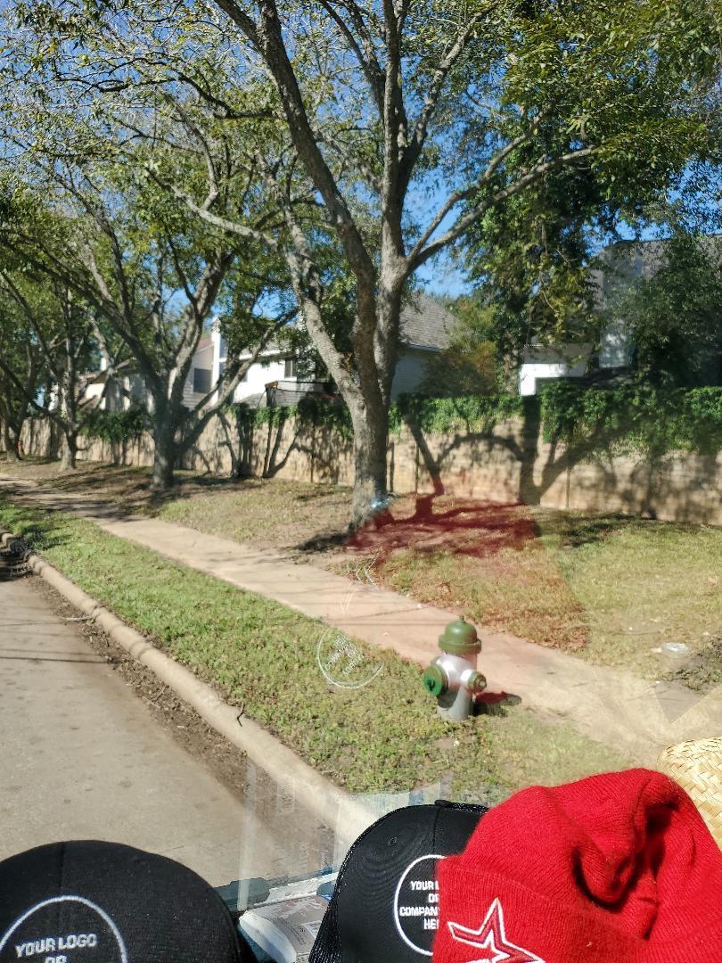 Missouri City, TX - Replaced broken sprinkler heads