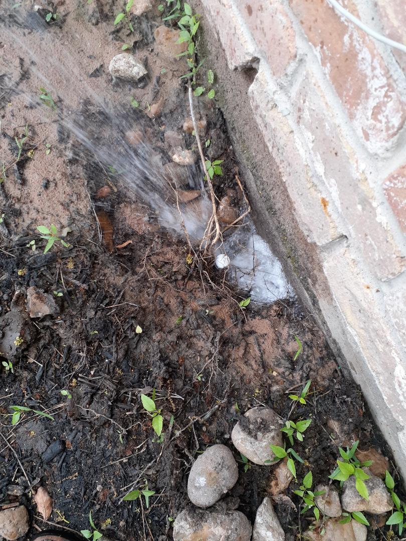 Shenandoah, TX - Repairing sprinkler leaks