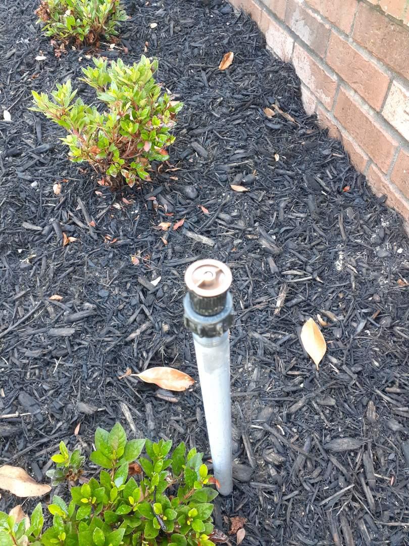 Cypress, TX - Replacing sprinkler nozzles