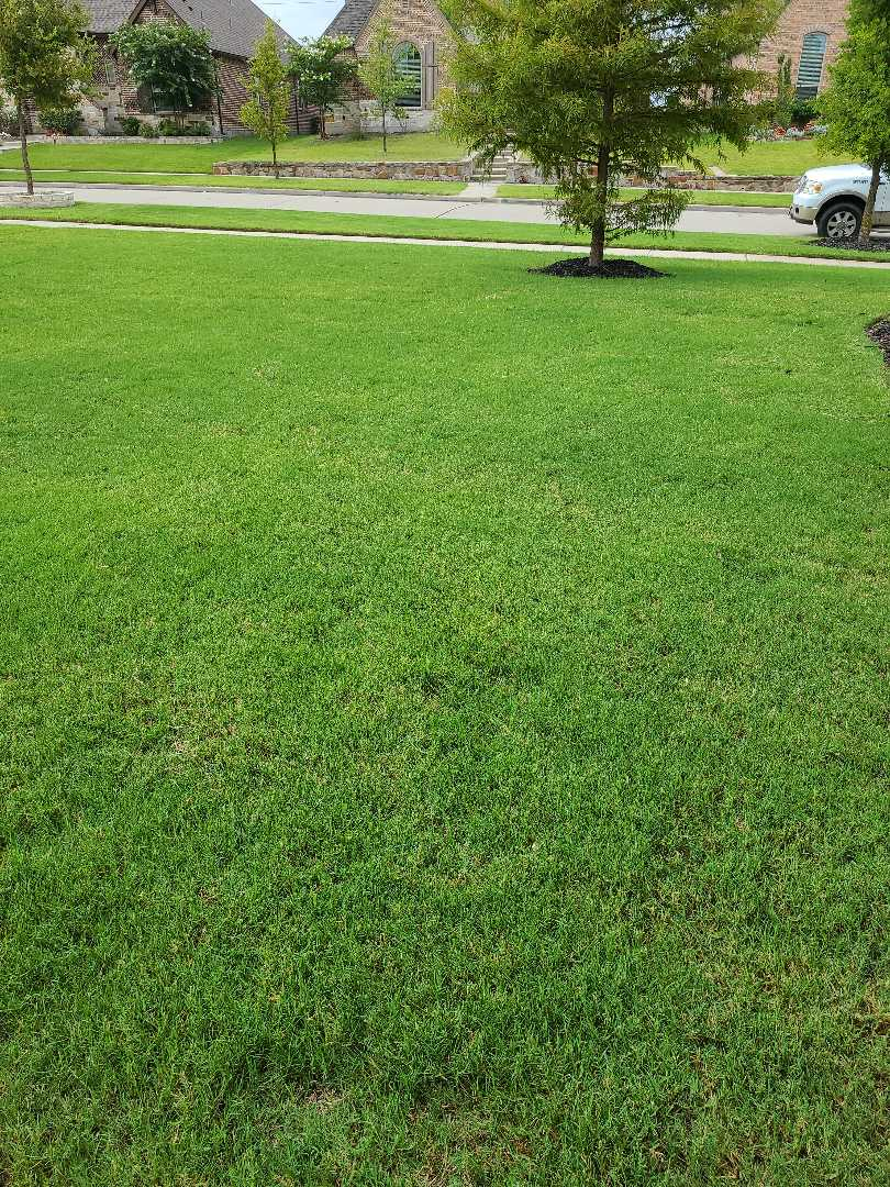 Frisco, TX - Sprinkler system repairs, Drip lines installation on pot's.