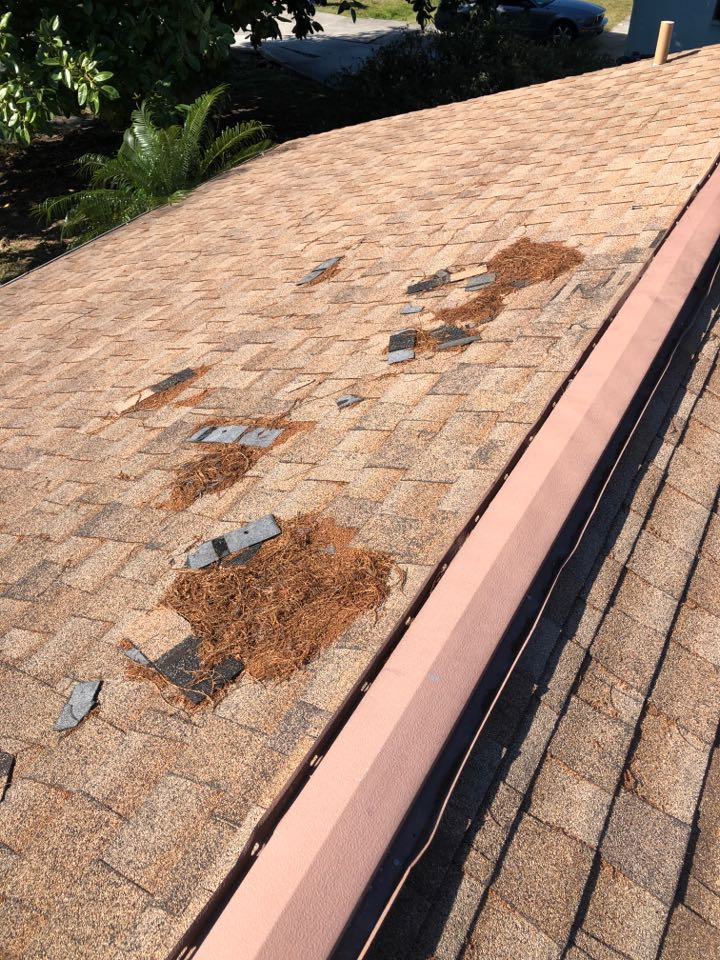 Venice, FL - Storm damaged roof being replaced.
