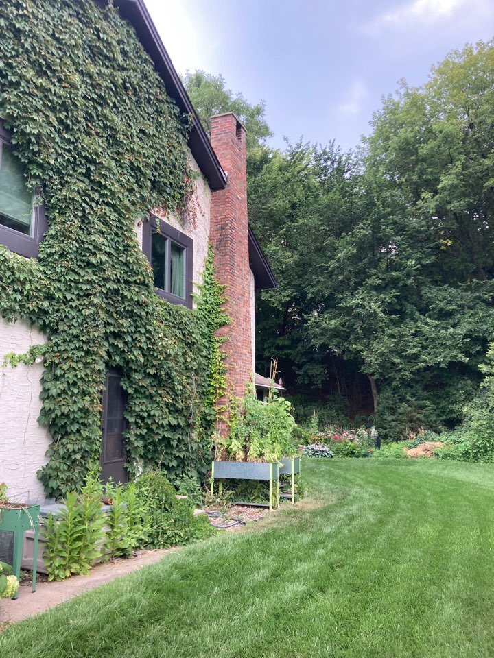 Mendota Heights, MN - Chimney clean and smart scan flue liner inspection and ash dump clean
