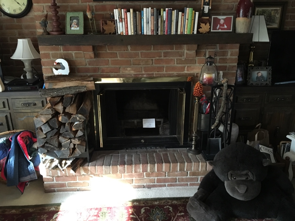 Apple Valley, MN - Chimney clean and Smart-Scan inspection