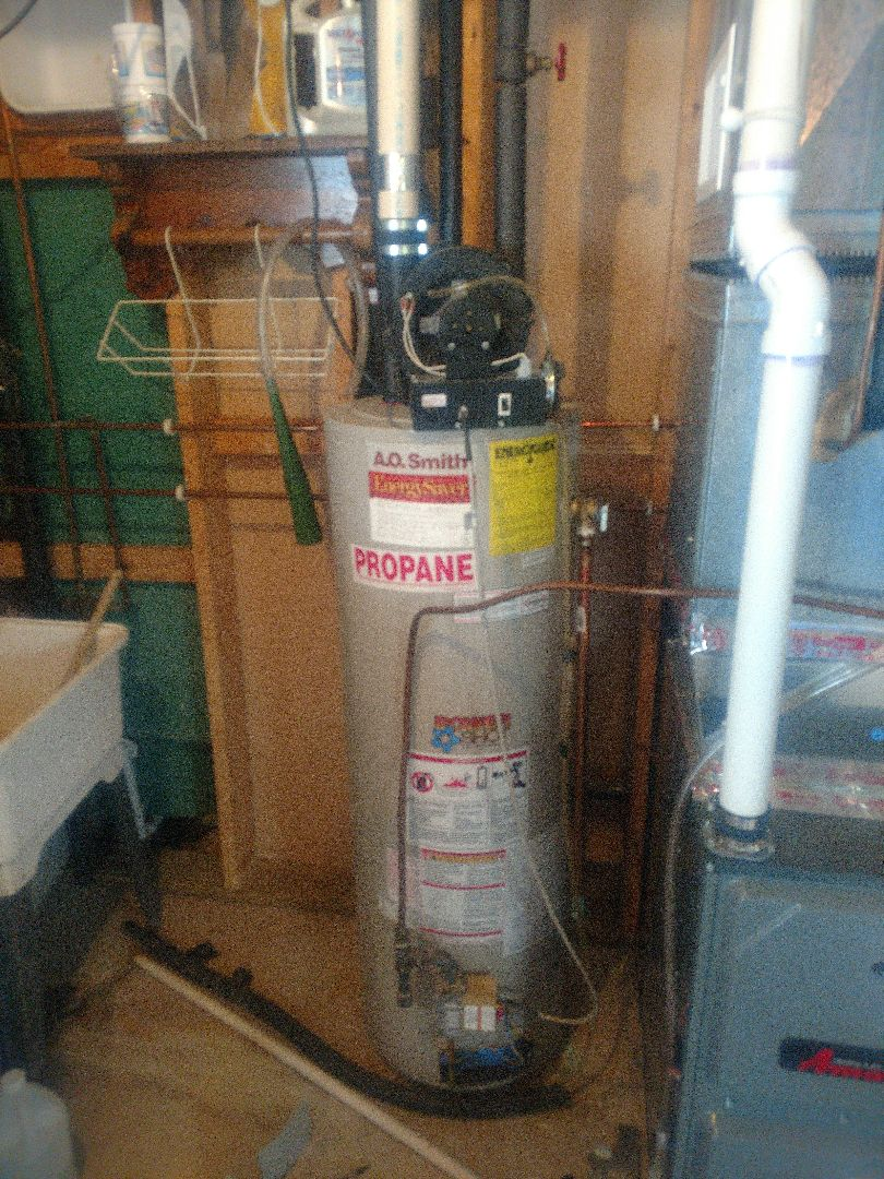 Stanchfield, MN - AO Smith power vent water heater repair. No hot water service.