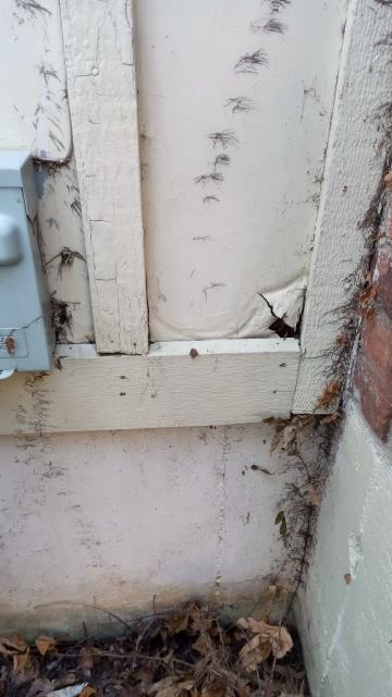 Overland Park, KS - Repair siding as soon as possible to avoid wood rot, water damage and termites or other pests from damaging your home.