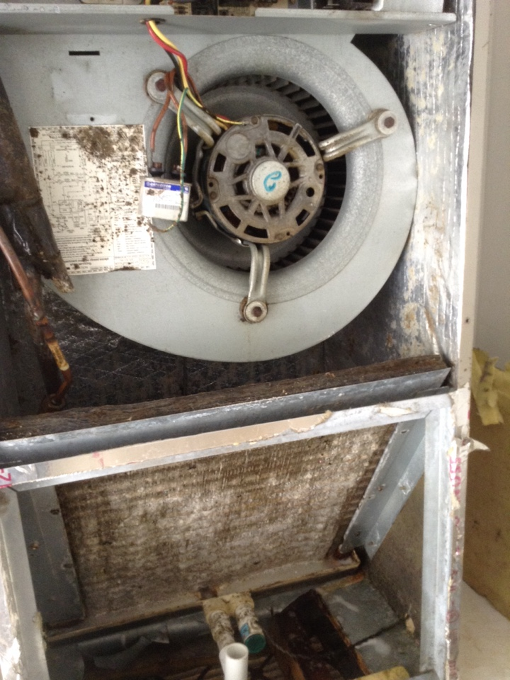 Heat pump and air conditioning repair in palm harbor fl for Motor for ac unit cost