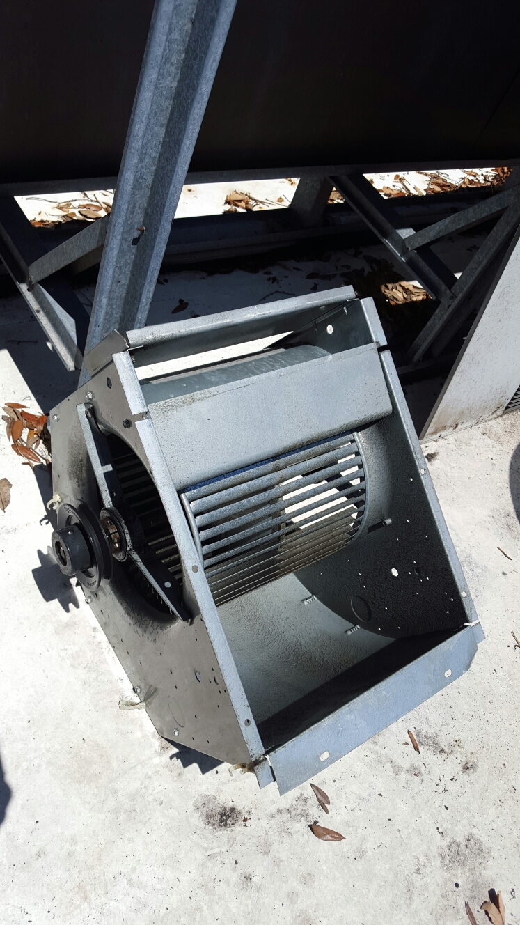 Largo, FL - Blower wheel cleaning on carrier rooftop package ac system.