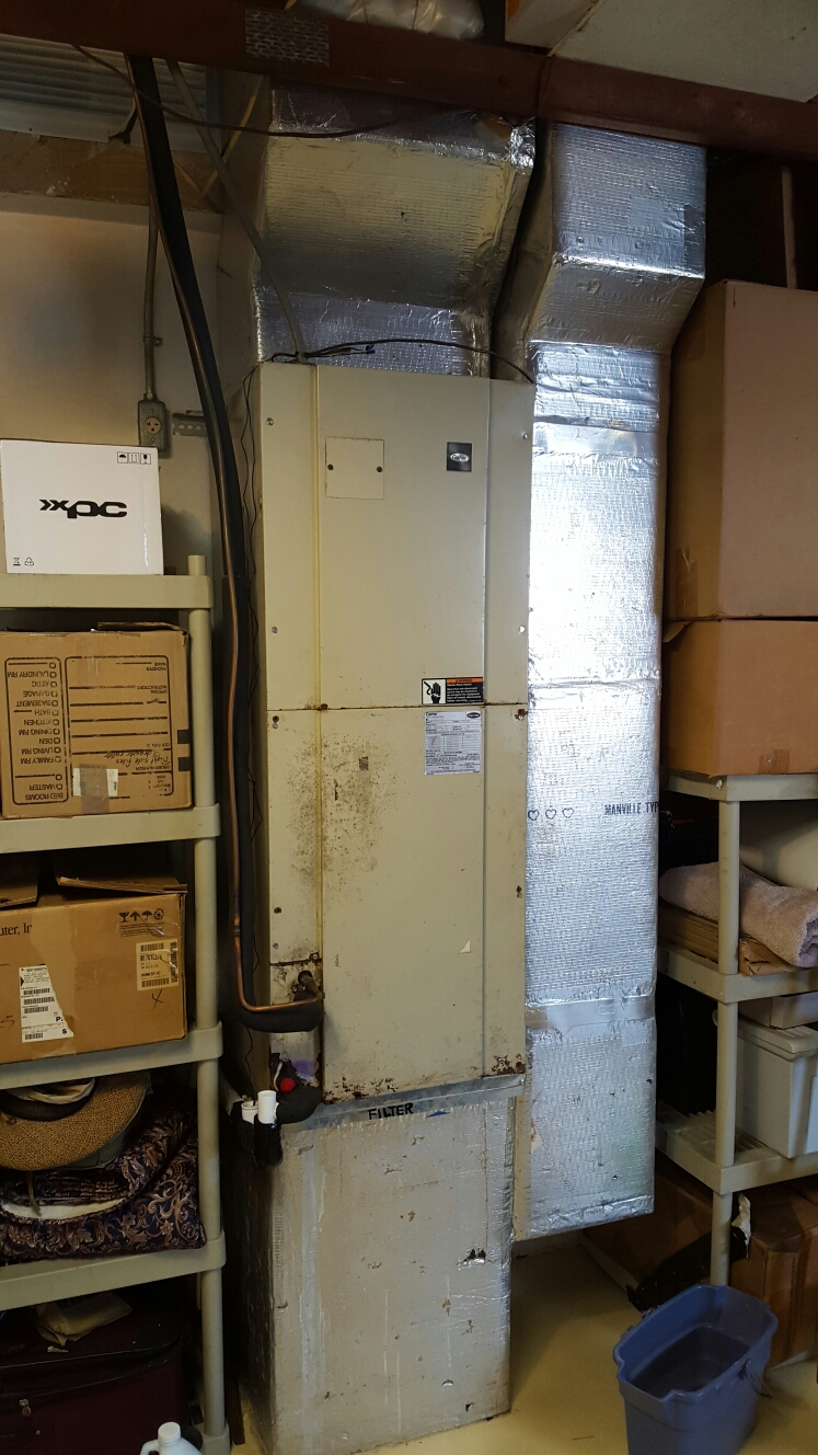 Seminole, FL - Carrier air handler leaking water.
