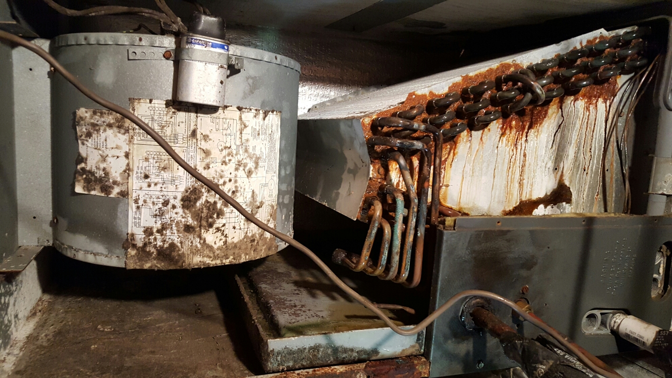 Clearwater, FL - goodman ac evaporator coils rusted