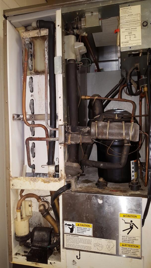 Kenneth City, FL - Hoshizaki ice machine not working properly. Ice machine repair service.