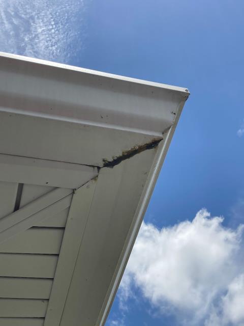 Sarasota, FL - gutter inspection, gutter replacement