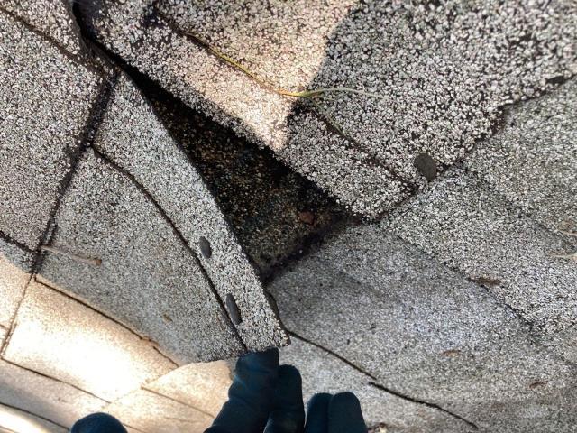 Dunedin, FL - Roof inspection