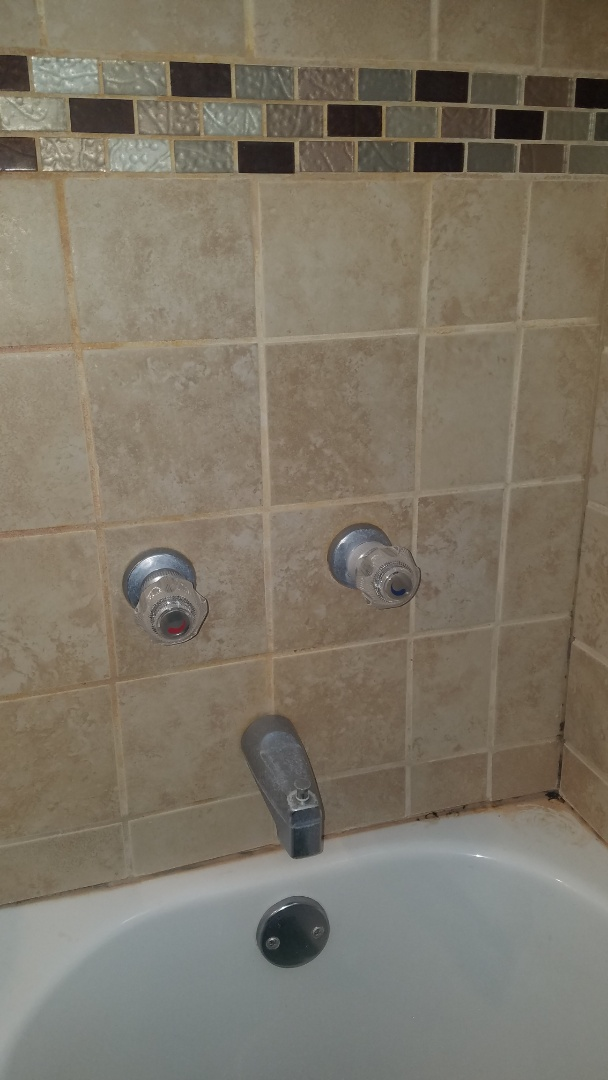 Blaine, MN - Water pipe repair.  Repair leaking shower valve.