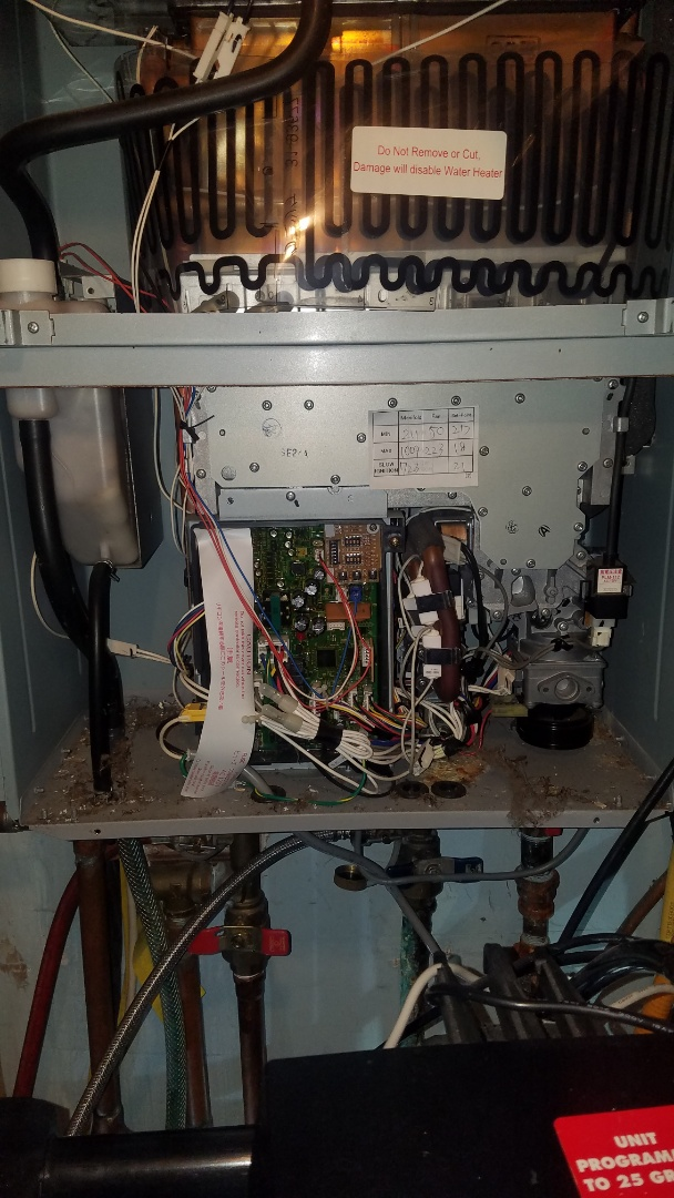 Ham Lake, MN - Tankless water heater service.