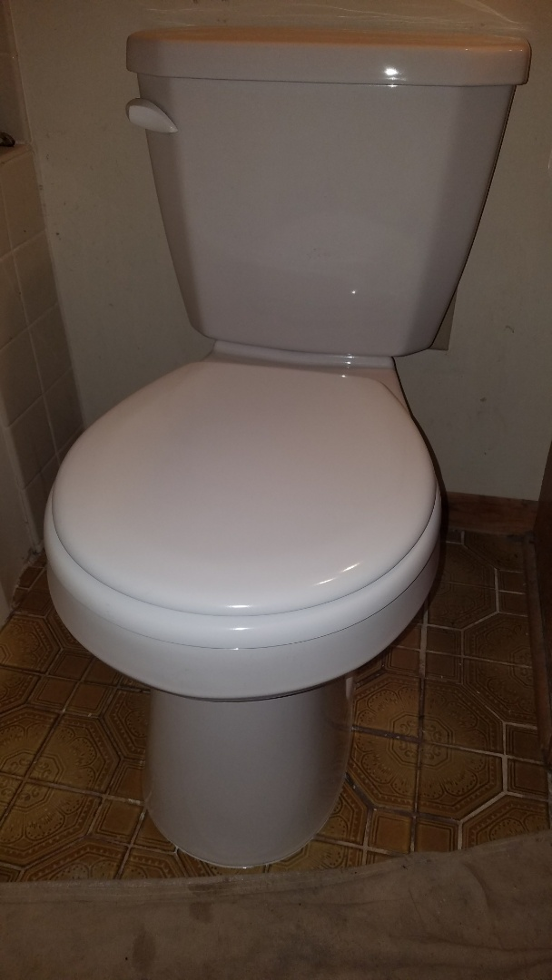 Circle Pines, MN - Toilet repair. Replace gasket dual flush toilet