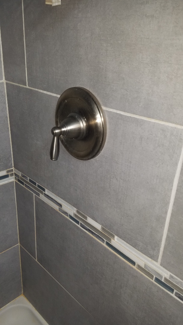 Shoreview, MN - Low pressure in shower. Install new Moen tub and shower valve.
