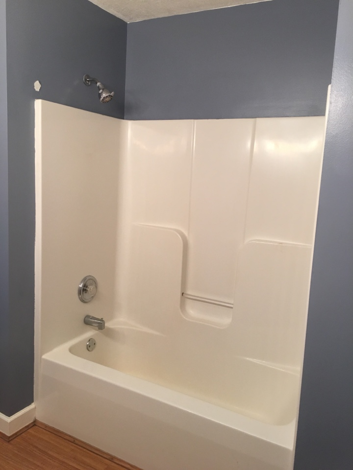 Interlochen, MI - Tub-to-shower conversion before pic