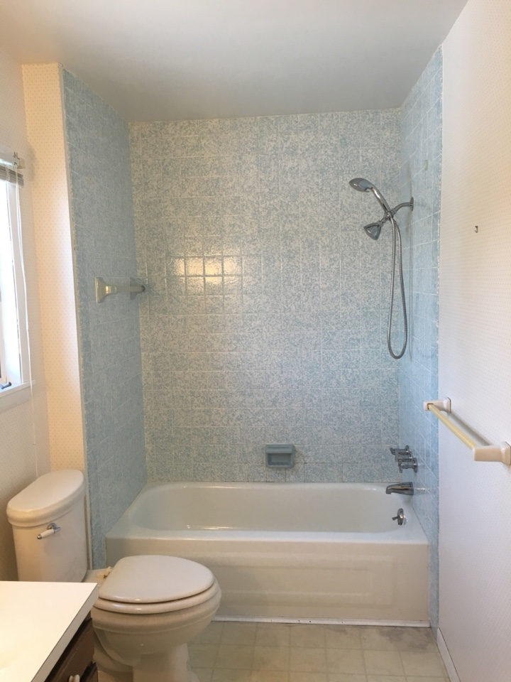 Traverse City, MI - Removal of old hard to clean tile and metal tub.
