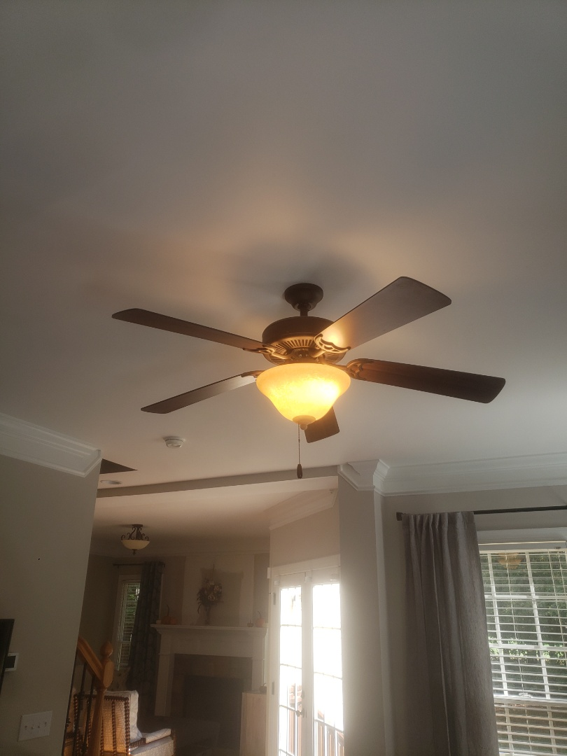 Troubleshoot faulty ceiling fan light in family room