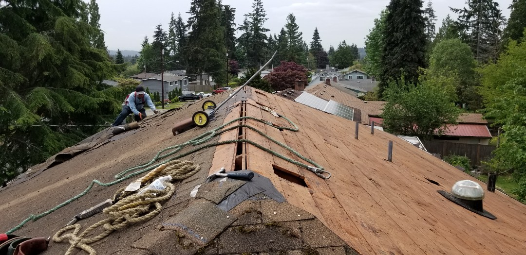 Mountlake Terrace, WA - New Certainteed roof installation...just beginning the tear off of the old roofing material.