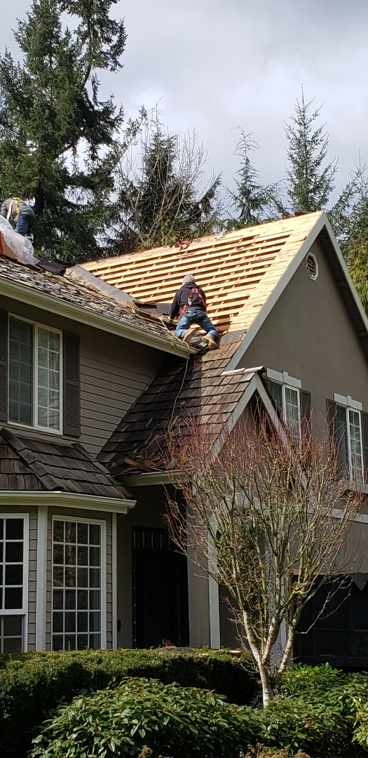 Woodinville, WA - Just getting started in a shake tear off and reroof in Woodinville.