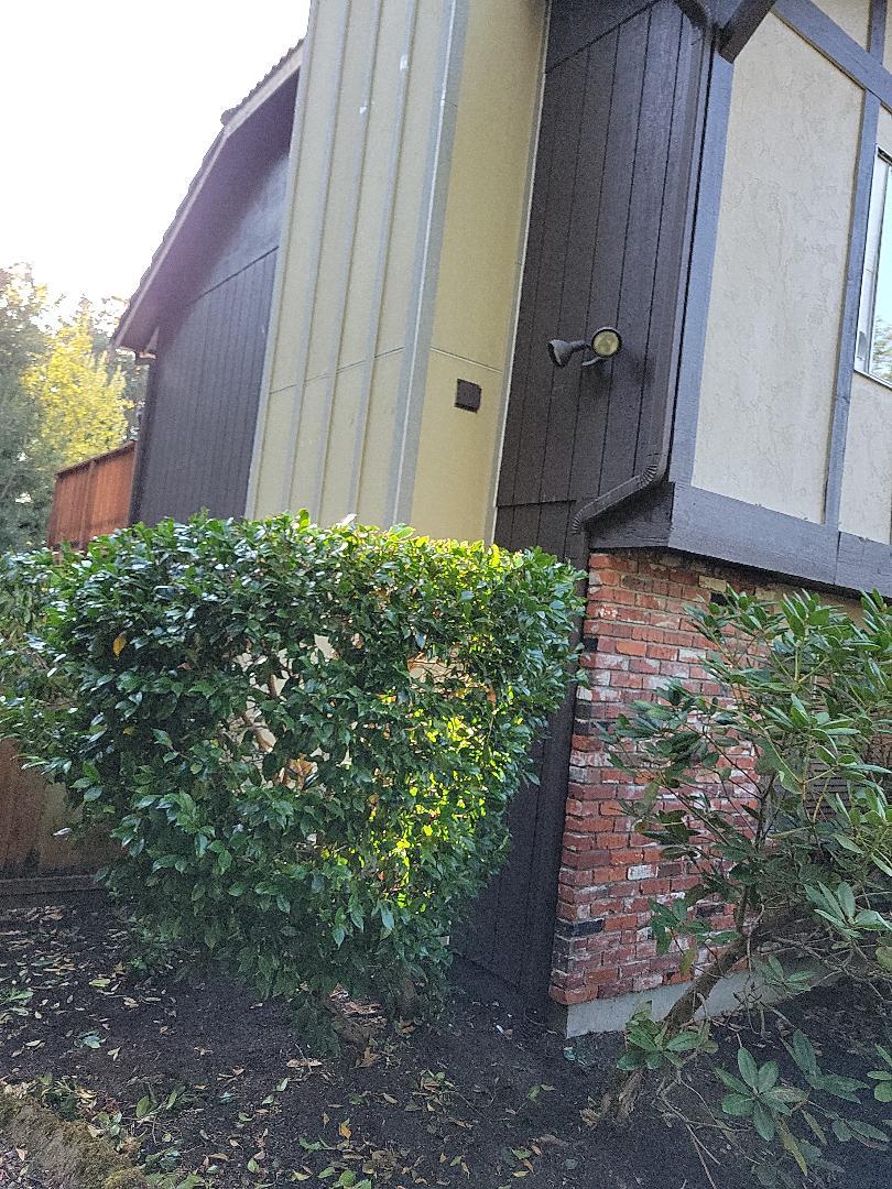 Lynnwood, WA - Chimney repair