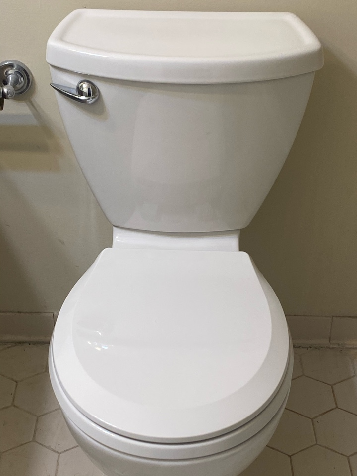 La Plata, MD - Installed new toilet in LaPlata, MD