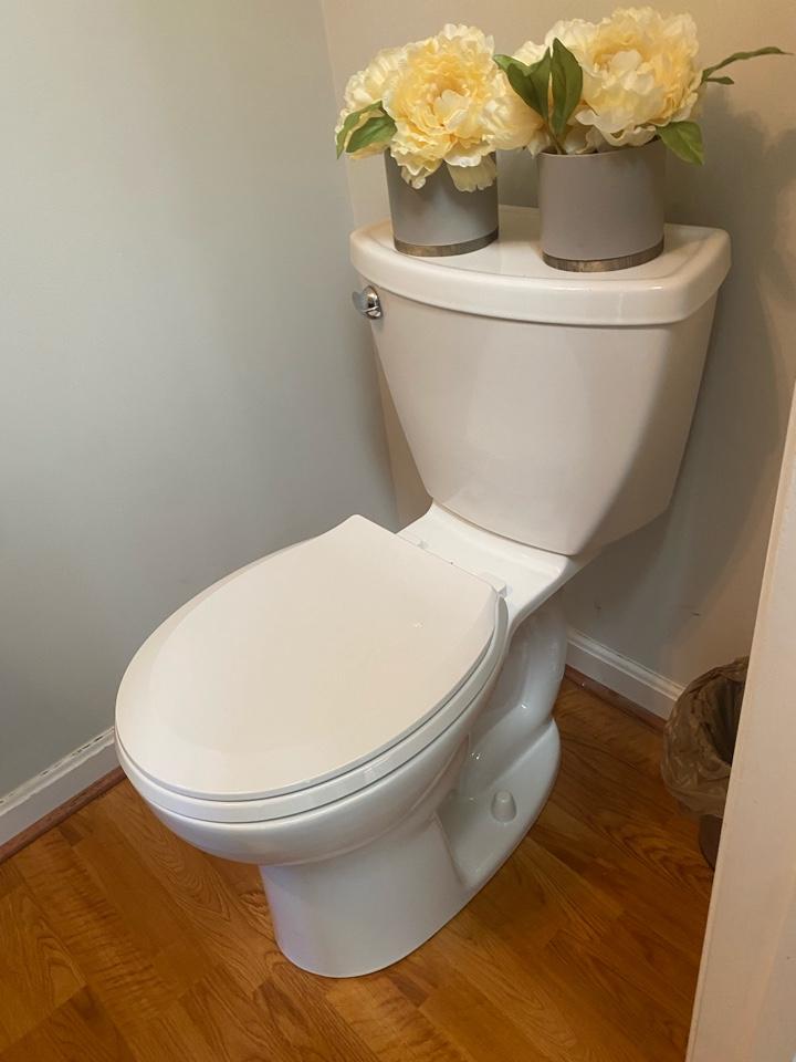 Toilet repair in White Plains, MD