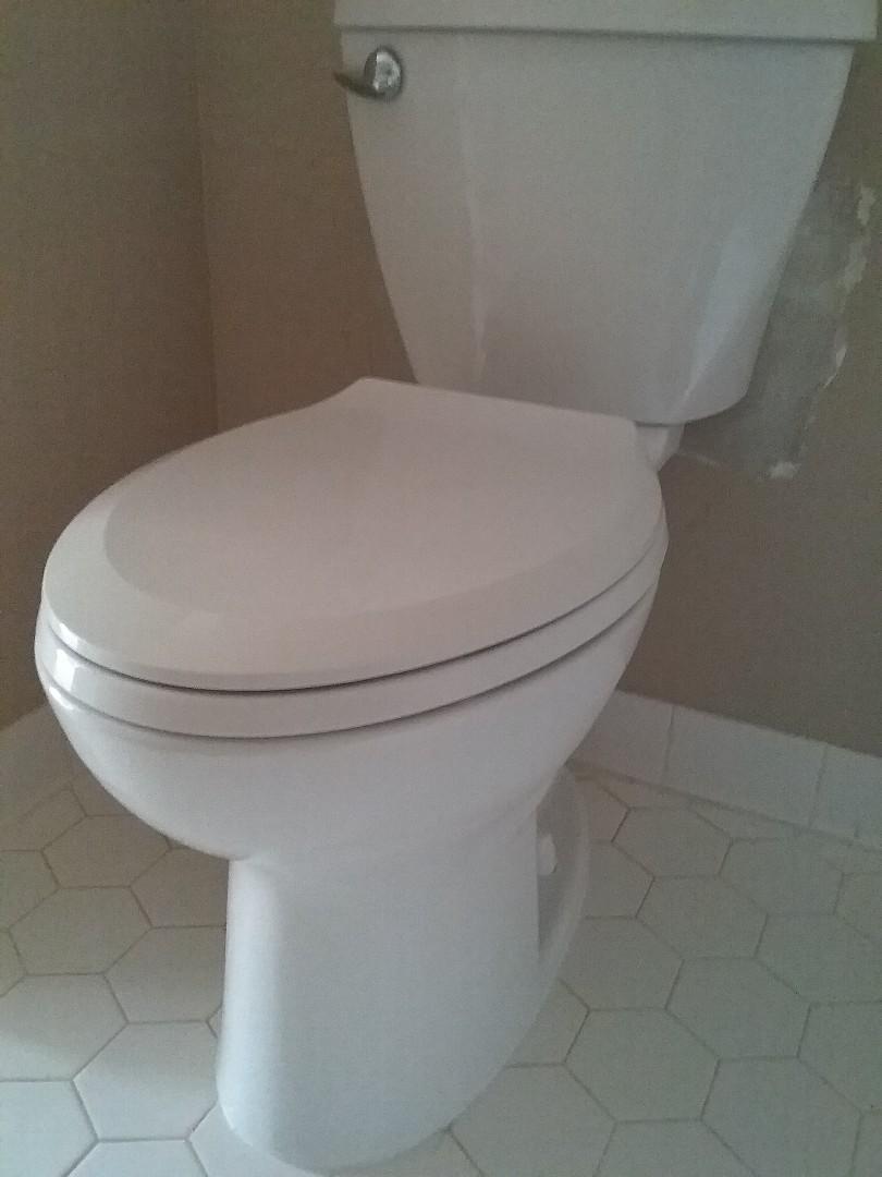 Vestavia Hills, AL - Plumbing and gas. Installed new toilet